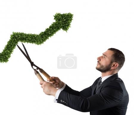 Businessman that cuts and adjusts a plant