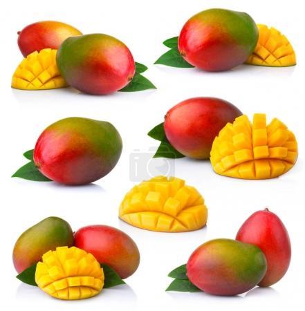 Set of ripe mango fruits with slices isolated