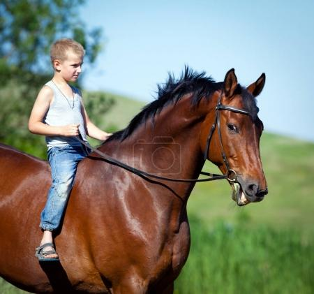 Child riding a big bay horse in field. Boy with horse outdoors.
