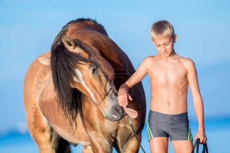 Photo pour Portrait du jeune cheval au coucher du soleil. Dialogue entre grand cheval et garçon sur fond bleu à l'extérieur. Cheval sourire drôle. - image libre de droit