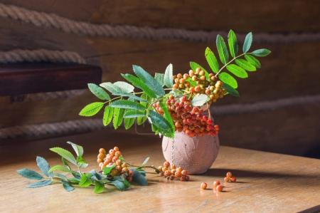 ashberry in jug on wooden table