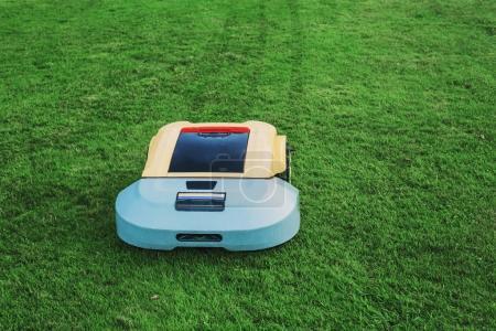 Robot lawn mower on background green grass