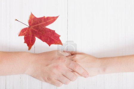 two hands and red leaf on white wooden background