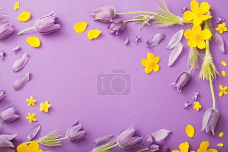 Photo for Purple and yellow spring  flowers on violet paper background - Royalty Free Image