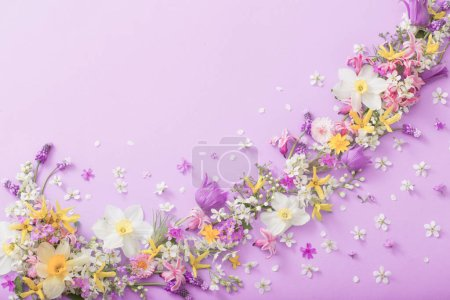 Photo for Beautiful spring flowers on pink  paper background - Royalty Free Image