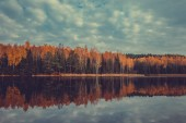 Autumn forest with yellow trees and lake, cloudy sky.