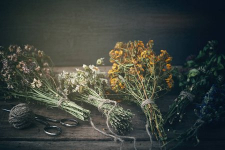 Photo for Bunches of healing herbs on wooden board. Herbal medicine. Retro toned photo. - Royalty Free Image