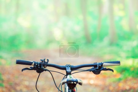 Mountain  bicycle in forest.