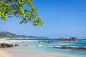 """Постер, картина, фотообои """"тропический пляж в Шри-Ланке,"""""""
