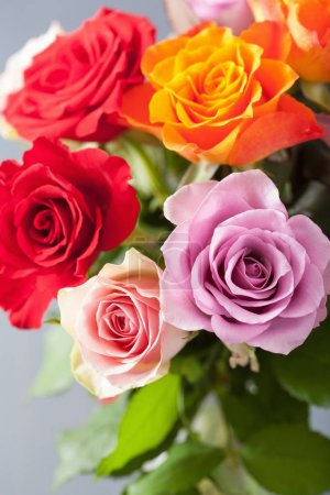 Beautiful colorful rose flowers bouquet