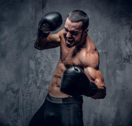 Photo pour Agressive boxer torse nu sur fond gris. - image libre de droit