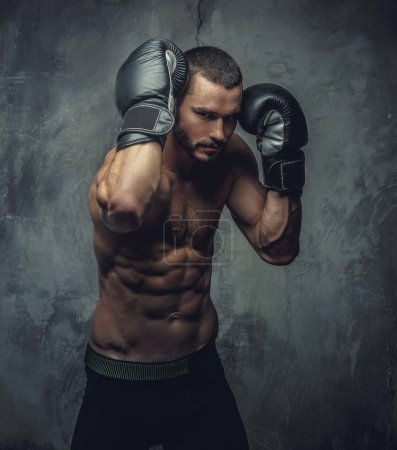 Photo for Brutal boxer fighter on grey background. - Royalty Free Image