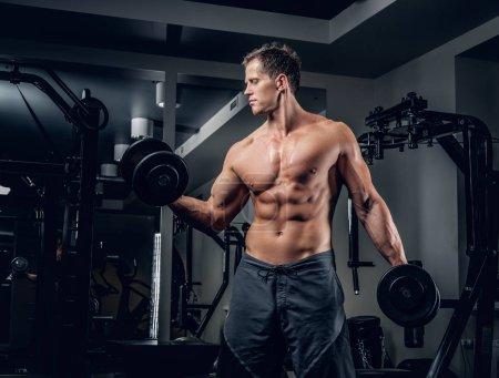 Muscular man doing biceps exercise