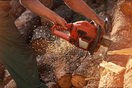 Professional chainsaw cuts firewoods