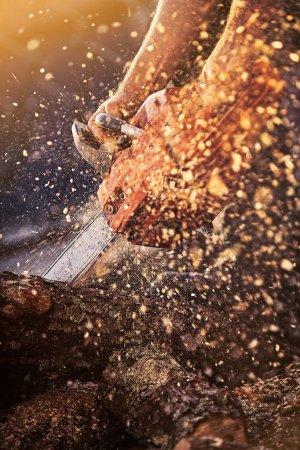 Photo pour Fermer tronçonneuse professionnelle coupe bois de chauffage . - image libre de droit