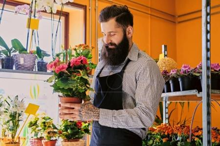 Photo for The bearded stylish flower seller holds flower pot in a market shop. - Royalty Free Image