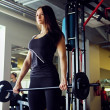 Athletic brunette female working out with dumbbell...