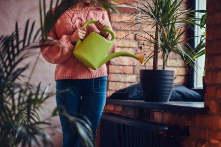 Photo pour Jeune charmante brune arrosant plante en pot debout dans une chambre avec mezzanine intérieur . - image libre de droit