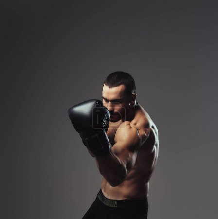 Photo for A brutal shirtless caucasian sportsman in boxing gloves training isolated on a gray background. - Royalty Free Image