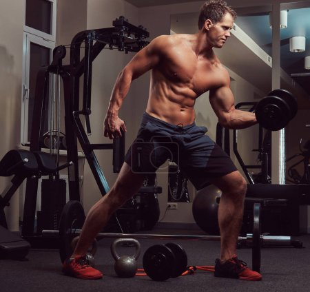 Muscular bodybuilder man doing exercises on a biceps with dumbbells in the gym.