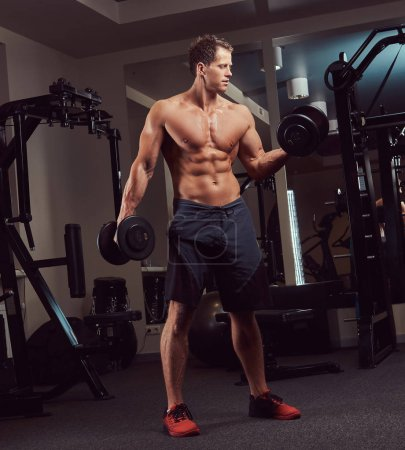 Muscular bodybuilder man doing exercises on a biceps with dumbbells in a gym.