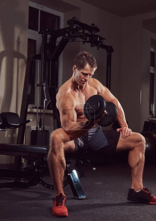 Muscular shirtless athlete doing exercise with dumbbells while sits on a bench in the gym.