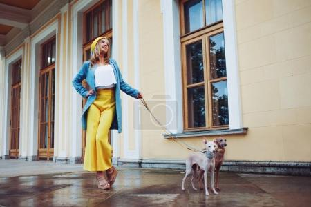 Stylish and beautiful young woman walks with dogs