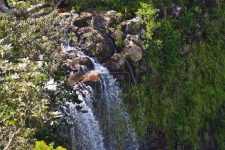 Waterfall at Mauritius island