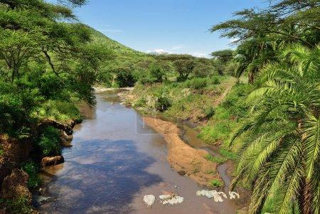 Seronera river,Tanzania