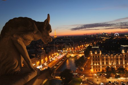 Chimeras of Notre Dame on sunset