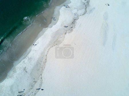 Portuguese beach of Barra