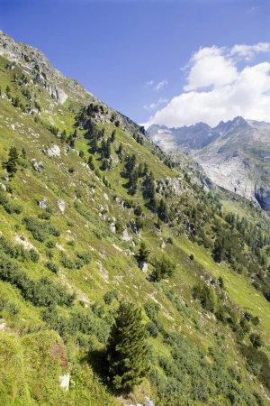Photo pour Paysage dans les Alpes suisses, canton de Berne ; Suisse - image libre de droit