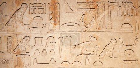 Mystery Egyptian hieroglyphs