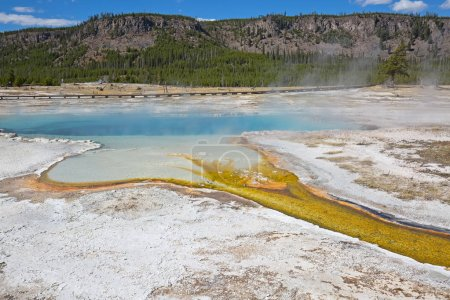 Hot pool in the Yellowstone National park
