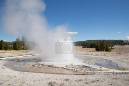 geyser eruption in the Yellowstone national park