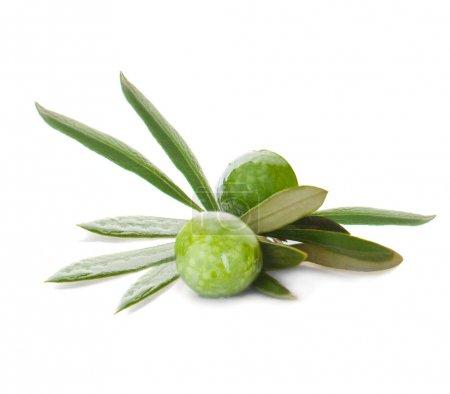 Green olives fruit on white background