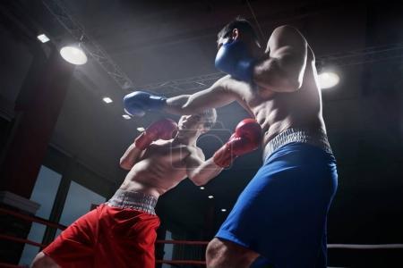 Photo pour Boxers combattant dans le ring de boxe - image libre de droit