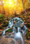 rapid mountain river in autumn.