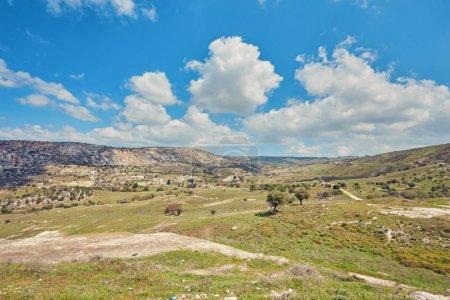 Sunny vanishing footpath among sunny growth on Avakas Gorge slop