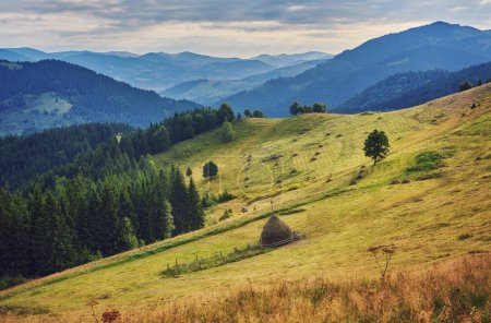 Photo for Mountainous landscape with forested hills. beautiful summer scenery on a cloudy day - Royalty Free Image