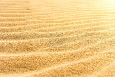 Photo for Sand texture on the beach with shining sun as natural tropical background - Royalty Free Image