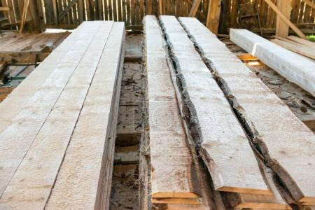 Planks in timber factory