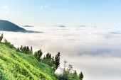 Green mountains in clouds