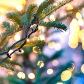 Holiday garland on christmas tree with blurred background