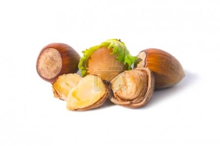 Hazel nuts with green leaf isolated on white background