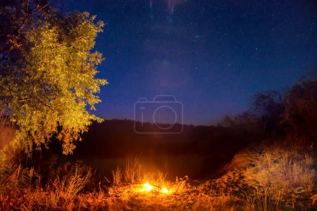 Photo for Fire at night in forest under night sky with stars - Royalty Free Image
