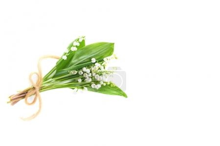 Convallaria flowers known as lilies of the valley isolated on white