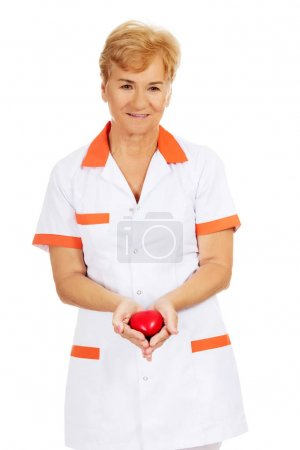 Photo for Smile elderly doctor or nurse holding red toy heart. - Royalty Free Image