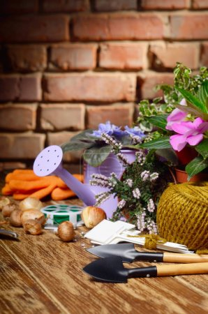 Gardening tools on wooden table
