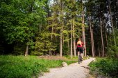 Mountain biker riding cycling in green inspiring forest